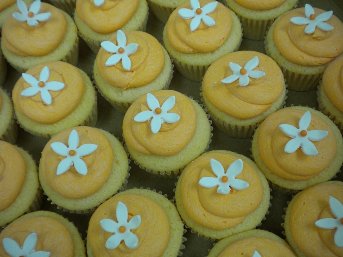 Vegan Cupcakes for a wedding or any occasion!